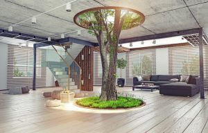 trends for sustainable homes on elemental green